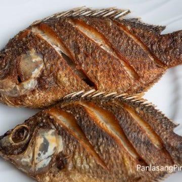Fried Fish Tilapia
