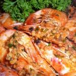 1-bgshrimp