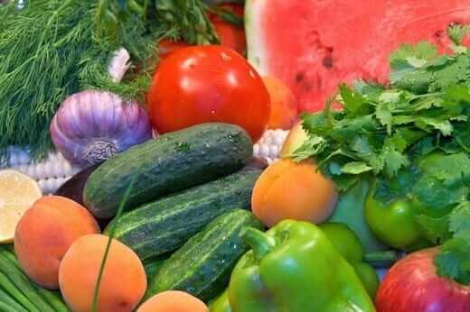 best food for fibromyalgia