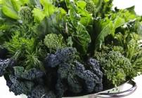 magnesium rich foods 2