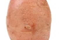how o bake sweet potato