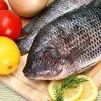 Top 10 Favorite Tilapia Recipes