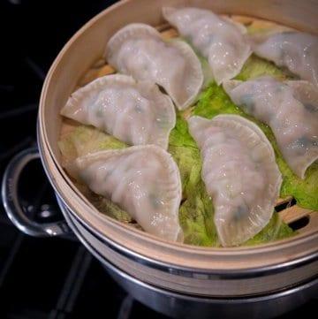 Homemade Pork Dumpling