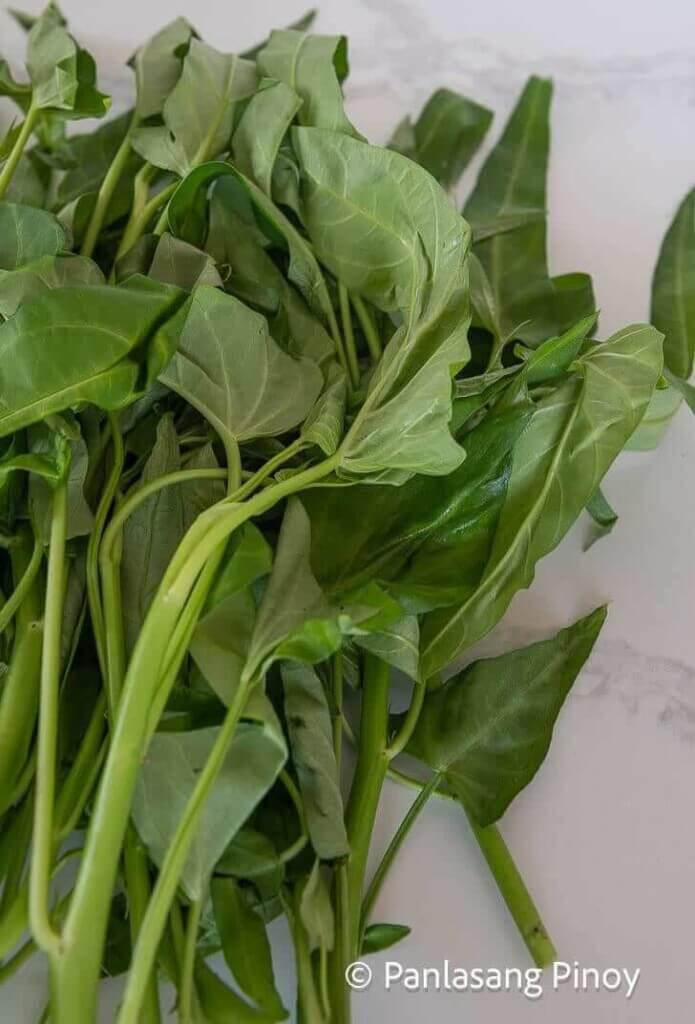 kangkong water spinach