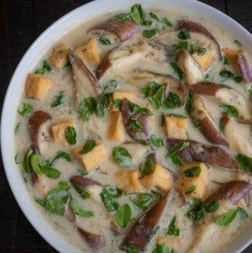 Eggplant with Tofu and Malunggay