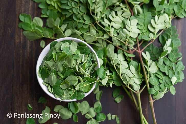 healthy moringa malunggay